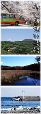 伊豆 伊豆高原 の観光情報