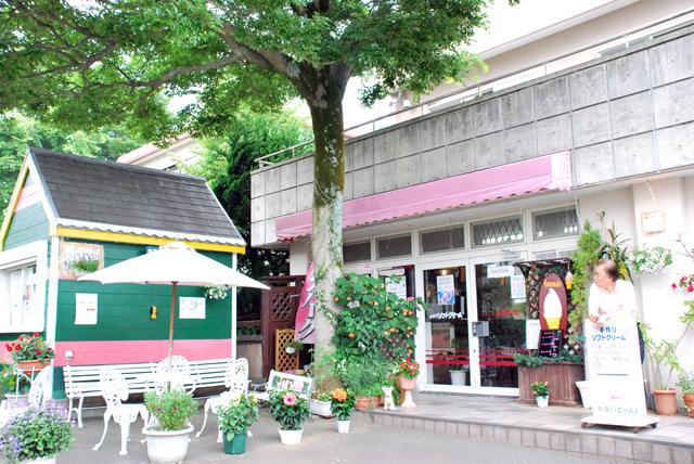 伊豆高原 グルメ 伊豆 カフェ ソフトクリーム スイートハウス わかば どんぐり